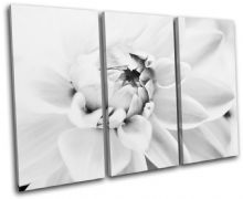Flower Contemporary Floral - 13-1479(00B)-TR32-LO